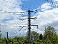 GOC The Pelhams 061 Pylon (27932109370).jpg