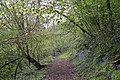 Gated Path on Hollybush Hill - geograph.org.uk - 779266.jpg