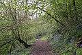 Gated Path on Hollybush Hill - geograph.org.uk - 779266.jpg