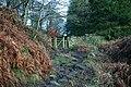 Gateway into Sheepshaw Plantation. - geograph.org.uk - 655269.jpg