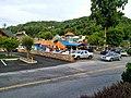 Gatlinburg, TN 37738, USA - panoramio (13).jpg