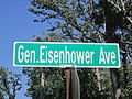 Gen. Eisenhower Avenue, Shreveport, LA IMG 2360.JPG