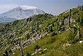 Gifford Pinchot National Forest, Mt St Helens NVM, blast zone, from Mt Margaret (37175421105).jpg