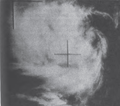 Gilda 1965.png