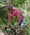 Giro 2015 contador.jpg