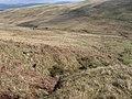 Glen Burn - geograph.org.uk - 394745.jpg