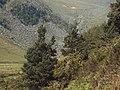 Glendalough - panoramio (1).jpg