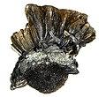 Goethite-Hematite-258720.jpg