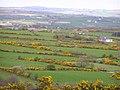 Gortnagrace Townland - geograph.org.uk - 406983.jpg