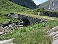 Gotthard Brücke Saumweg.JPG