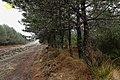Gralhas, 5470, Portugal - panoramio (8).jpg