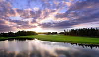 Grand Meadows Golf.jpg