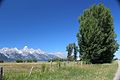 Grand Teton-Mormon Row 26.JPG