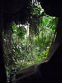 Grandes Serres Du Jardin Des Plantes Wikipedia