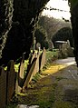 Gravestone by the path, Ashburton - geograph.org.uk - 1082080.jpg
