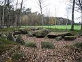 Großsteingrab Düvelskuhlen I.JPG