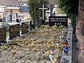 Groby Zgromadzenia Siostr Sw Elzbiety - Cmentarz na Sluzewie przy ul Renety (2).JPG