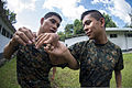 Guatemalan marines participate in a combat conditioning exchange with U.S. Marines assigned to a landing attack subsequent operations team as part of U.S. Marine Corps Martial Arts Program training during 140819-N-XQ474-183.jpg