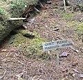 Gwaii Haanas National Park (27554322485).jpg