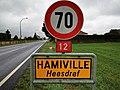 Hamiville (105).jpg