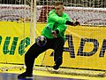 Handball-WM-Qualifikation AUT-BLR 144.jpg
