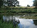Hanning's Pool at Kyre Park - geograph.org.uk - 493351.jpg