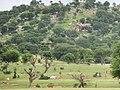 Harry Mountain around Dougu Village in the Western Sudan, South Darfur State.jpg