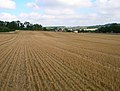 Harvested Field - geograph.org.uk - 535035.jpg