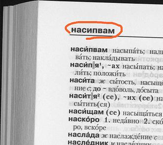Page header - Header in a dictionary.