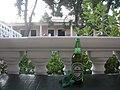 Heineken in the best vote for Žába - panoramio.jpg