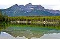 Herbert Lake - panoramio (2).jpg