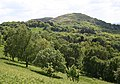 Herefordshire Beacon from the North - geograph.org.uk - 445131.jpg