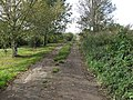 Hereward Way - geograph.org.uk - 1556049.jpg