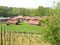 Hessenpark Blick über den Weinberg auf die Baugruppe Südhessen.JPG