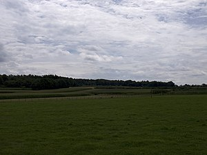 Achterberg - Corn fields in the direction of Rhenen, seen from Achterberg