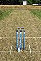 High Beach Cricket Club wicket pitch stumps and bales High Beach, Essex, England 2.jpg