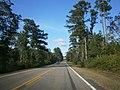 Highway 11 - panoramio (3).jpg