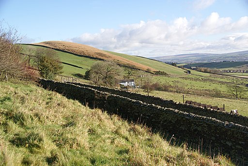 Hillside above Well Head Farm (geograph 2149470)