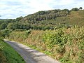 Hillside near Watergate Cross - geograph.org.uk - 249602.jpg