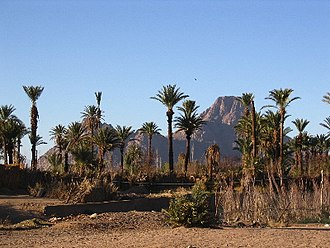 Sahara - An oasis in the Ahaggar Mountains. Oases support some life forms in extremely arid deserts.