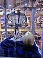 Hogwarts School, The Makingbof Harry Potter, Warner Bros Studios, London (Ank Kumar) 15.jpg