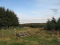 Horse jump - geograph.org.uk - 602662.jpg