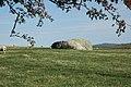 Huge boulder near Bryn y Ffynon, Bethel. - geograph.org.uk - 339189.jpg