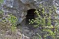 Hundsheimer Berg-0251.jpg