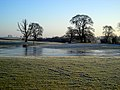 Icy Field - geograph.org.uk - 638747.jpg