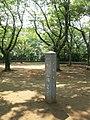 Ikutaryokuchi 06b8462v.jpg