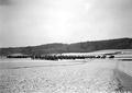 In Formation besammelte Infanterie auf dem Felde - CH-BAR - 3237862.tif
