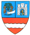 Interbelic Tarnava Mare County CoA.png