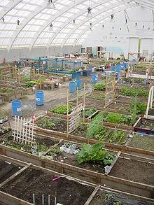 Image Result For Green Building Design