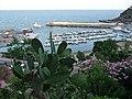 Isola di Ustica, Sicily - panoramio (26).jpg